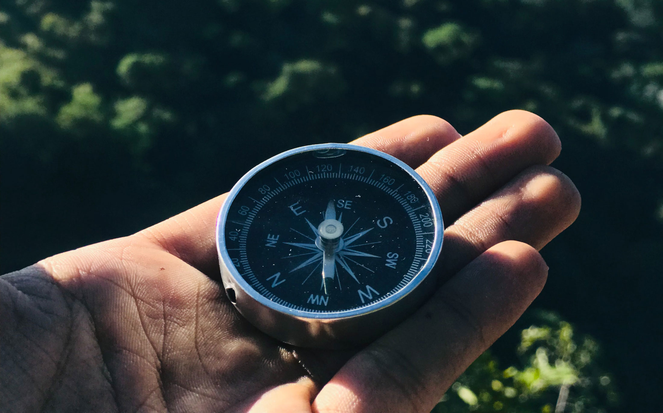 Hand holding compass over forest